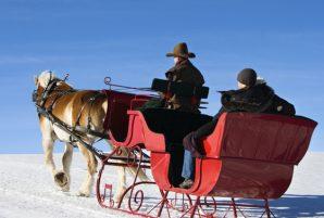 7 Sleigh Rides in Ottawa