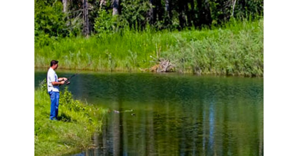 Carburn Park - The Best Parks and Picnic Spots in Calgary