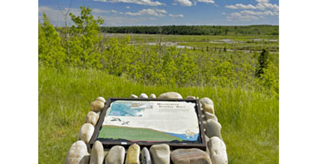 Weaselhead Flats - Best Park and Picnic Spots in Calgary