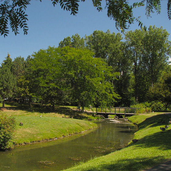Best Parks and Picnic Spots in Ottawa - Andrew Haydon Park