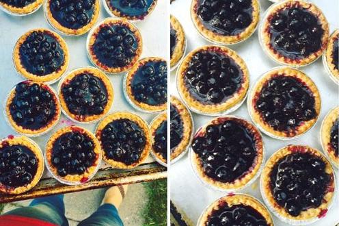 15 minute blueberry tarts