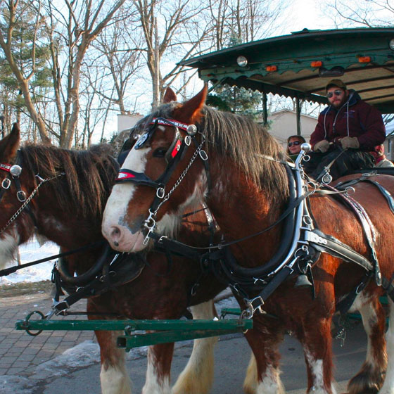 Manotick Olde Fashioned Christmas Parade: Saturday, December 1