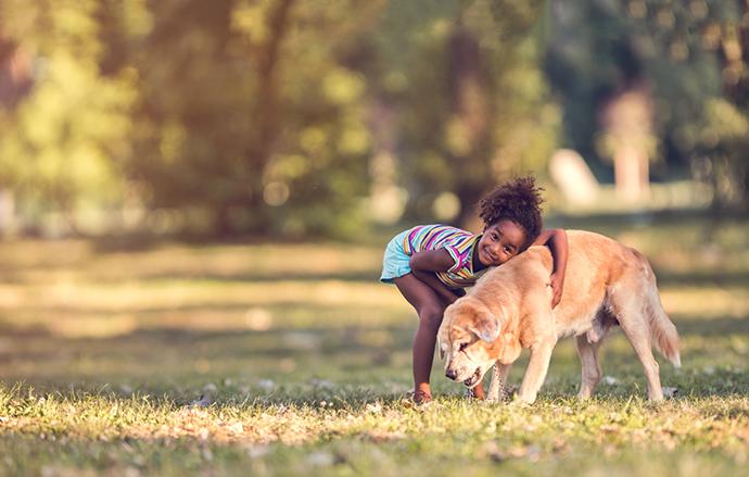 The Ottawa Humane Society