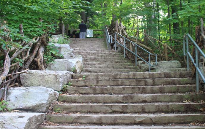 Best picnic spots in Toronto: Sherwood Park