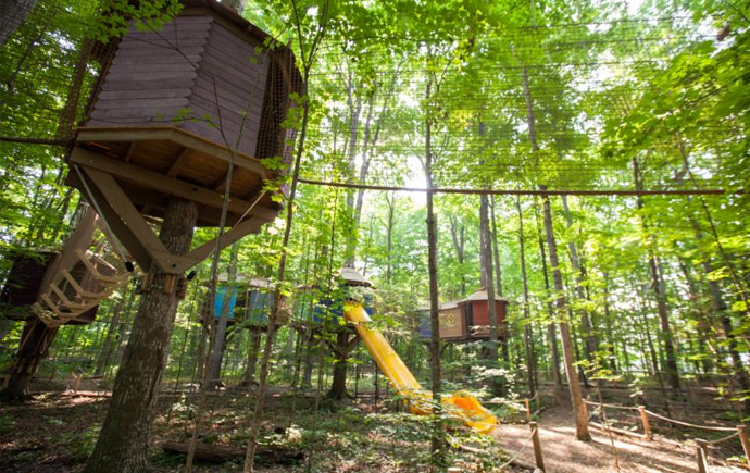 go treetop trekking in stouffville barrie or brampton. Black Bedroom Furniture Sets. Home Design Ideas