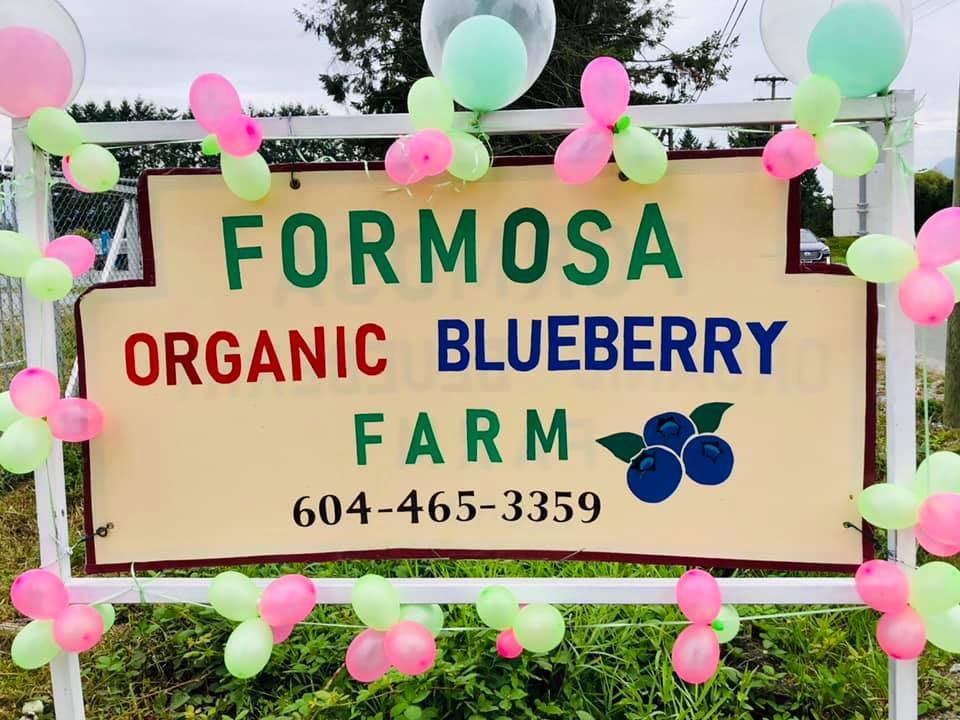 SavvyMom-Vancouver-U-Pick-Berry-Farm-Formosa-Nursery