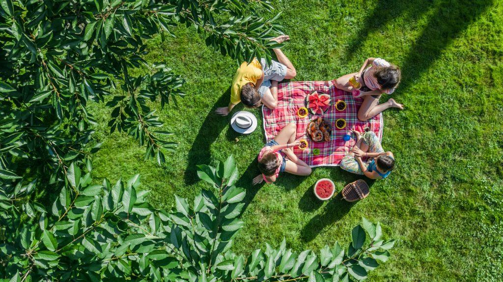 Best Family Picnic Spots in Toronto