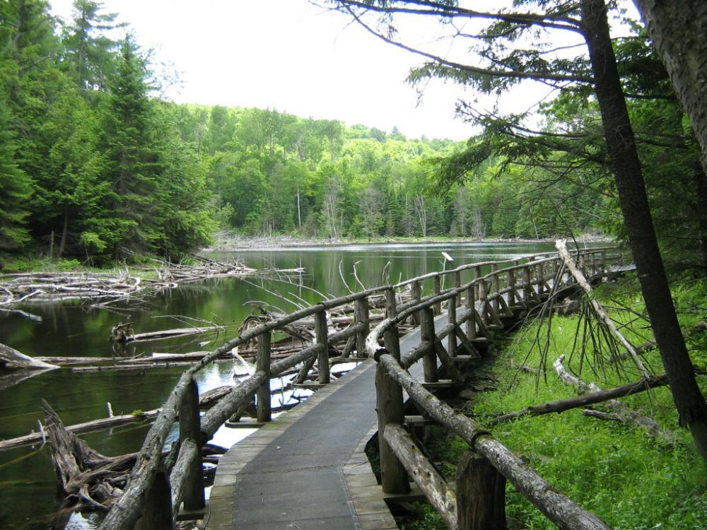 Best Parks and Picnic Spots in Ottawa - La Foret La Blanche