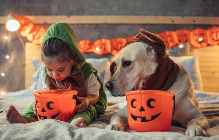 Family Activities and Events for Halloween in Ottawa
