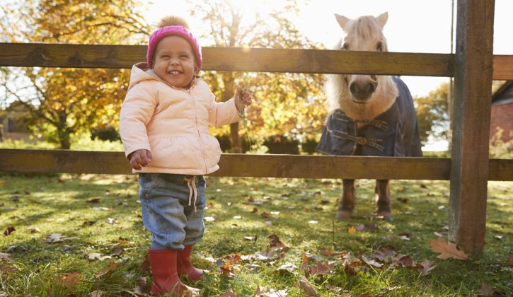 Things to Do in Ottawa With Babies, Toddlers & Preschoolers for $5 or Less