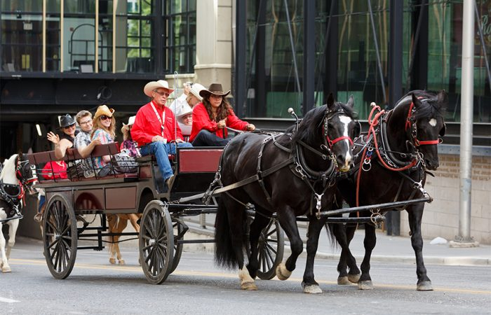 Calgary Stampede_feature