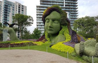 Mosaiculture Mother Earth