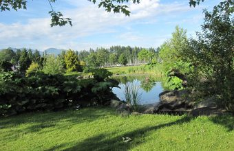 Vancouver Hikes_feature