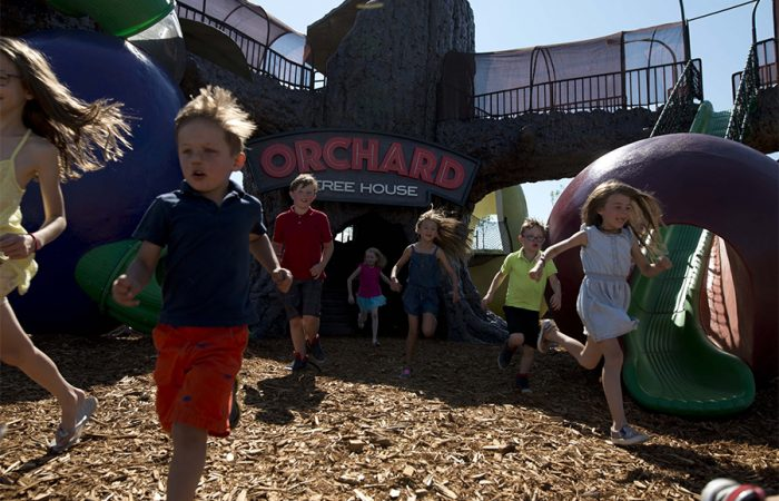 15 Best Places To Take Kids in Calgary