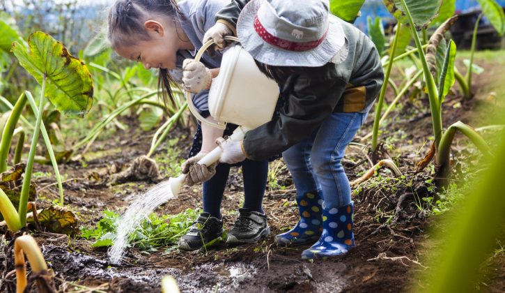 Unique Activities for Kids in Vancouver