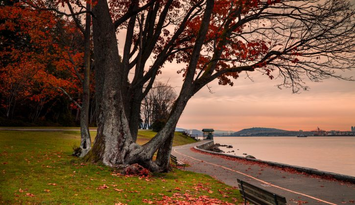 Fun-Things-to-Do-in-Vancouver-for-Families-SavvyMom