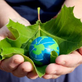 8 Tips to Help Green the Earth