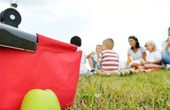 10 Places to Picnic in Calgary