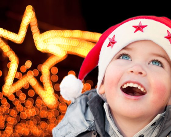 6 Holiday Light Displays in Calgary