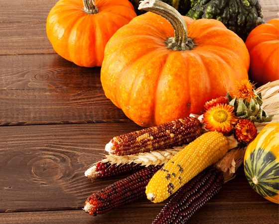 Best of the Bloggers' Thanksgiving Décor Ideas