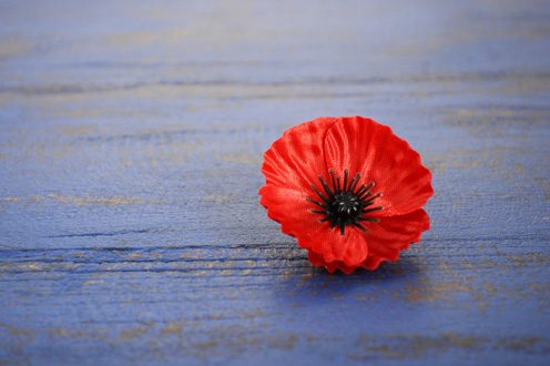 talking_to_kids_about_remembrance_day