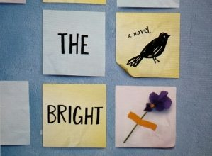 Cover.All-the-Bright-Places