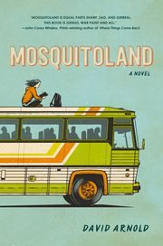 635616726071355574-Mosquitoland-cover