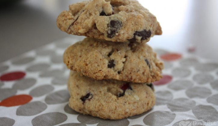 flourless-chocolate-chip-cranberry-cookies-Copy