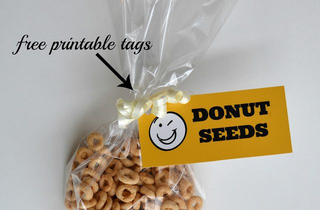 donut2Bseeds_square