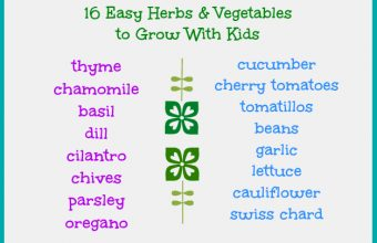 vegetables-to-grow-with-kids1