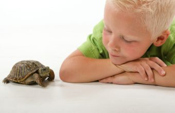 child-and-pet