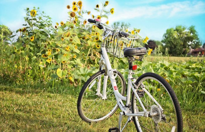 bicycle-871265_1280