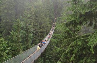 Capilano-Suspension-Bridge-Park-Vancouver-with-Kids-338x451