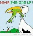 never-ever-give-up-frog-137x150