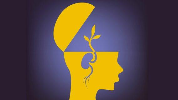 neuroplastic2