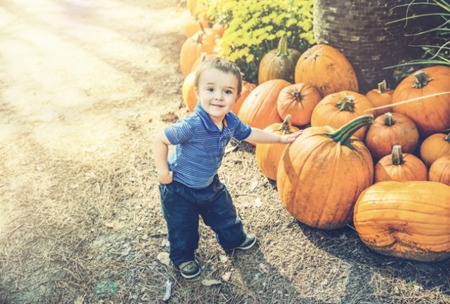 little_boy_with_pumpkin