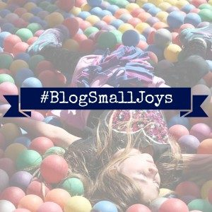 BlogSmallJoys-300x300