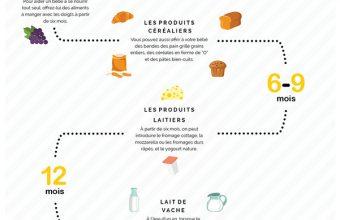infographic_en_francais_sized_for_article
