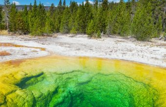 Best-Places-to-camp-in-Yellowstone-National-Park