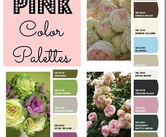 Pink-decor-Color-Palettes