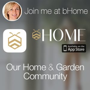 follow-settingforfour-at-bHome-app-2
