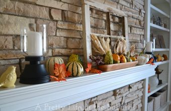 Thanksgiving-Fall-Decor-A-Pretty-Life