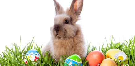 easter_events_in_vancouver_for_kids_2014