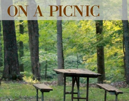 pack-for-a-picnic
