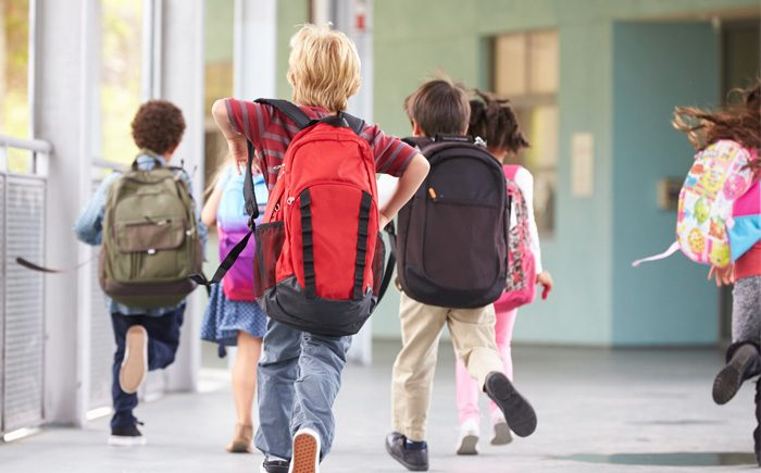 The Best Backpacks, Lunch Bags, and More for School