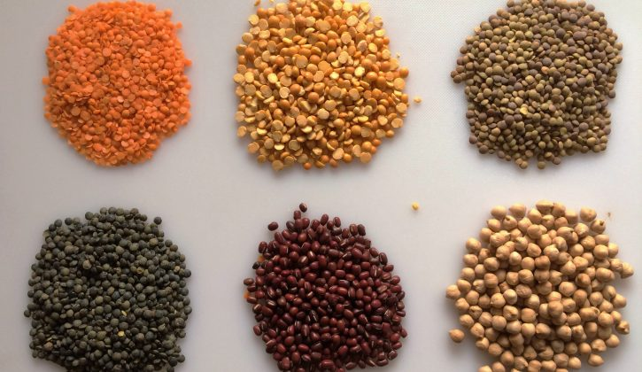 beans-and-lentils-2