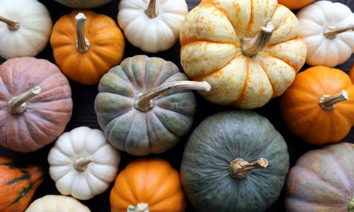 10 Perfect Pumpkin Recipes for Fall