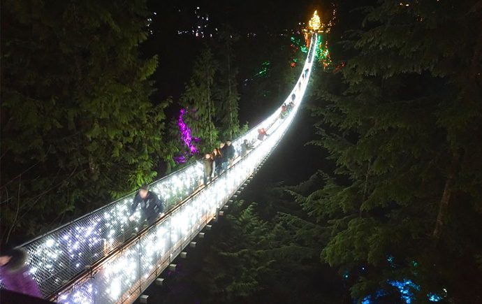Canyon Lights: Until January 28