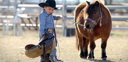 the_cutest_lil_cowbpy_ever_at_10_Great_Summer_Rodeos_and_Country_Fairs_in_Calgary