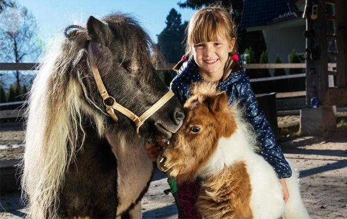 9 Spots in Toronto Where Kids Can Meet Animals